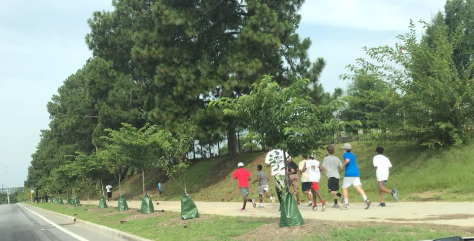 People jogging on a path near roadway where trees are being planted